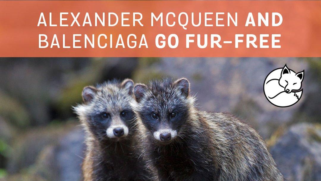 """Alexander McQueen y Balenciaga se convierten en marcas """"Fru Free"""""""